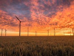 field-full-of-windmills-producing-green-power
