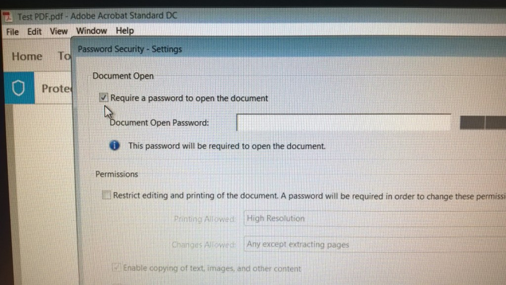 4 - insert the password you would like to use to protect the PDF